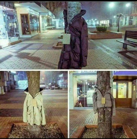 Bäume in München tragen Jacken für Hilfsbedürftige